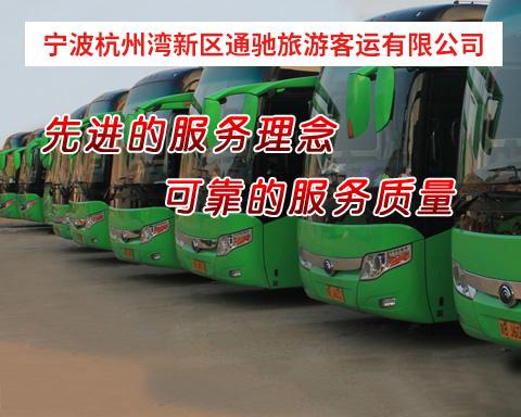 宁波杭州湾新区通驰企业管理服务有限公司